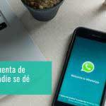 ¿Cómo espiar un Whatsapp sin que se den cuenta GRATIS?