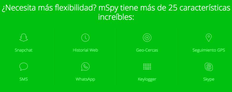 Funciones de mSpy